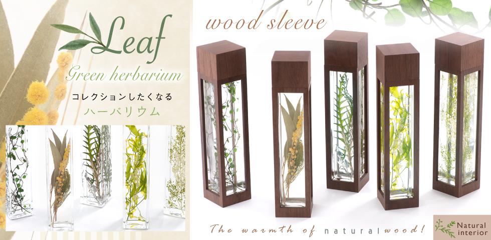 herbarium_bn_leaf.jpg